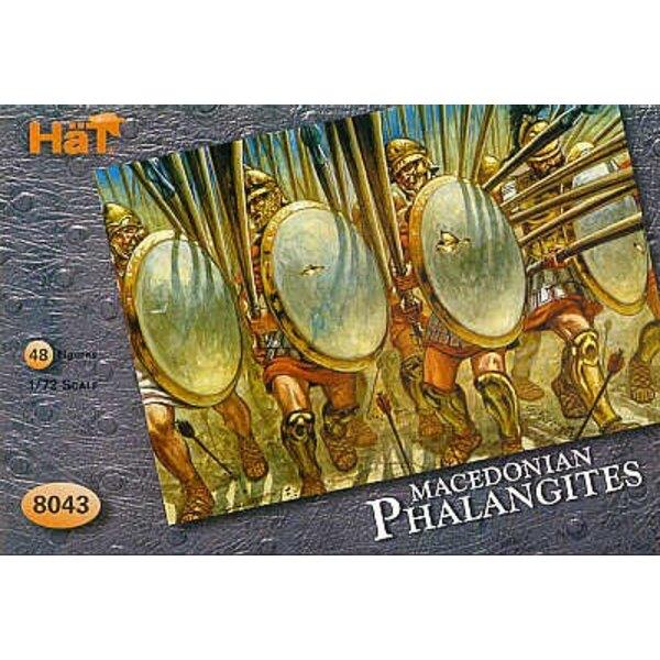 Der Phalangites von Alexander 48 Figuren (ohne Waffen)