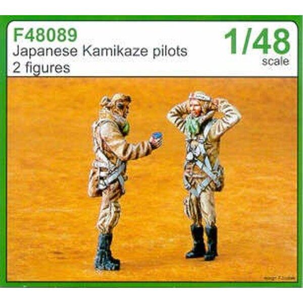 Der japanische Kamikaze-Pilot x 2