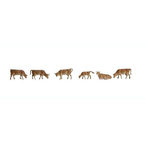 Berg-Kühe
