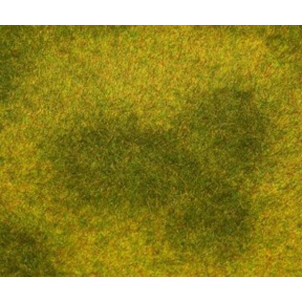 PREMIUM Landschafts-Segment, Wiese, hellgrün