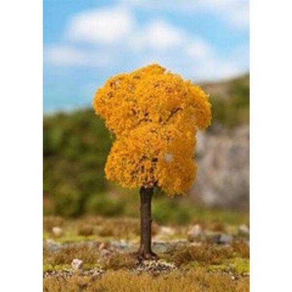 1 PREMIUM Esche, Herbstlaub