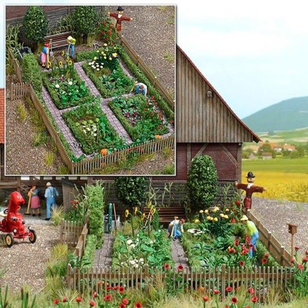 Rural Backyard