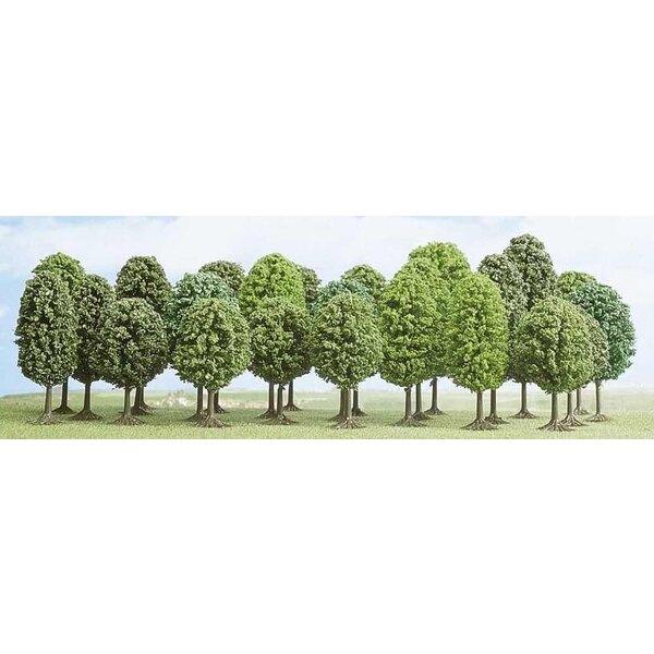 Sortiment von 25 Laubbäumen